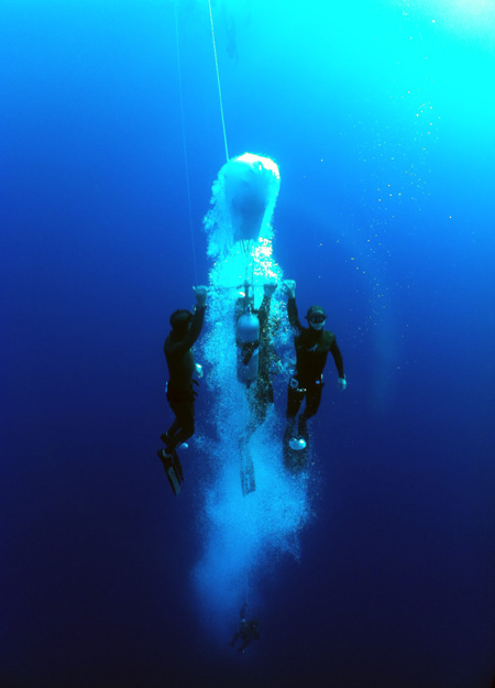 Freedive, Sharm, UK's pix (13)