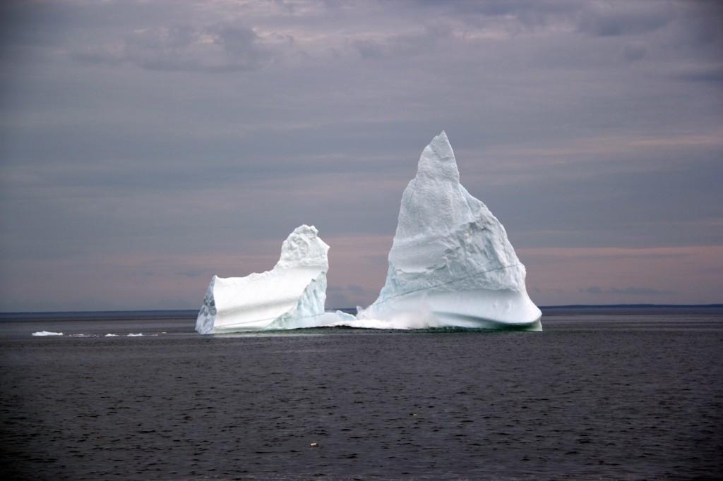 iceberg, paddy barry