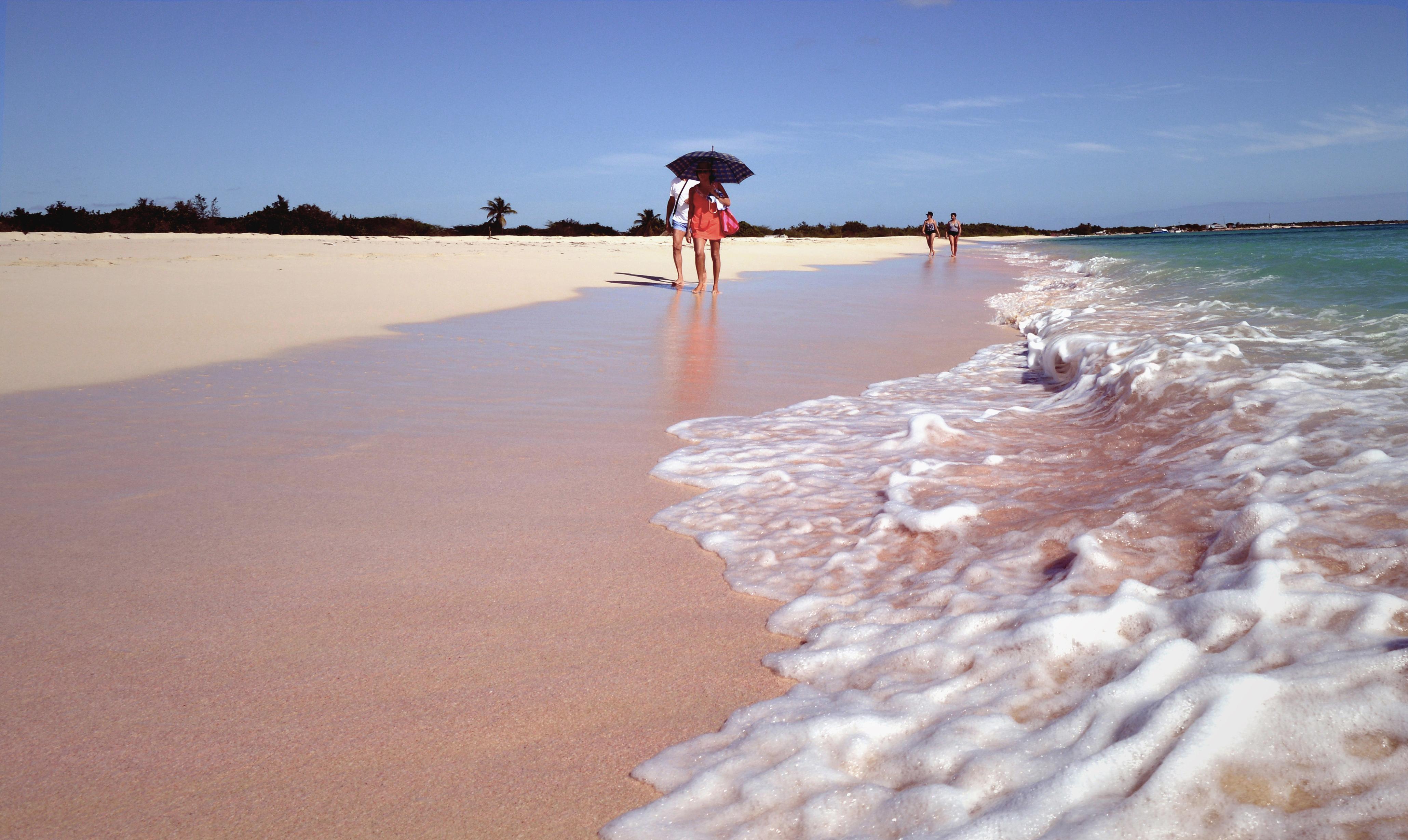 barbuda pink beaches - photo #23